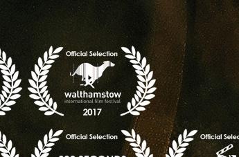 Walm selection.jpg