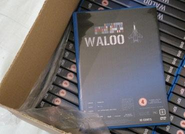 Waloo 2.jpg